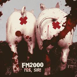 Yes, Sir 2011 FM2000