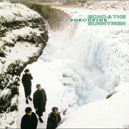 Porcupine 2004 Echo & The Bunnymen