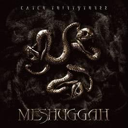 Catch Thirty Three 2018 Meshuggah