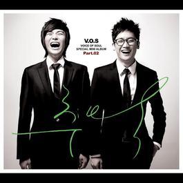 memory 2010 V.O.S
