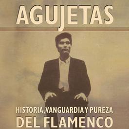 Agujetas: Historia, Pureza y Vanguardia Del Flamenco 2012 El Agujetas