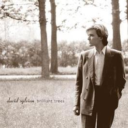 Brilliant Trees 2003 David Sylvian