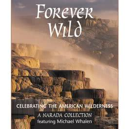Forever Wild 1996 Various Artists