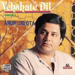 Vehshate Dil 2005 Anup Jalota