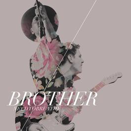 Brother (feat. Gavin DeGraw) 2015 Needtobreathe; Gavin DeGraw