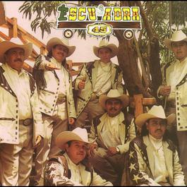 Escuadra 45 2010 Escuadra 45