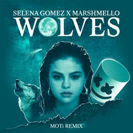 Wolves 2017 Selena Gomez; Marshmello