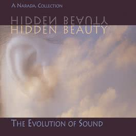 Hidden Beauty 1996 Various Artists