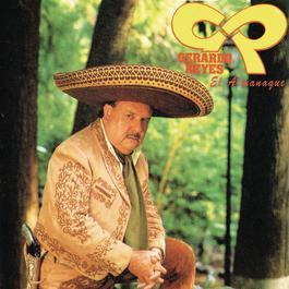 El Almanaque 2011 Gerardo Reyes