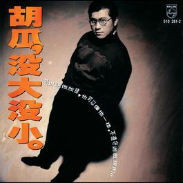 Mei Da Mei Xiao 1991 胡瓜