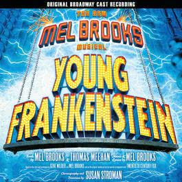 The New Mel Brooks Musical - Young Frankenstein 2007 Mel Brooks