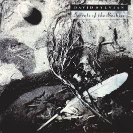 Secrets Of The Beehive 2003 David Sylvian