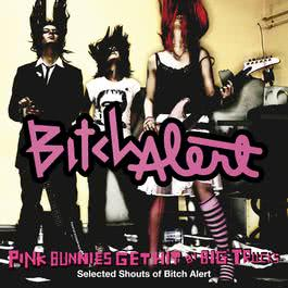 Pink Bunnies Get Hit By Big Trucks - Selected Shouts 2008 Bitch Alert