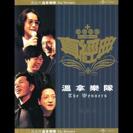 Zhen Jin Dian-The Wynners 2001 The Wynners (温拿乐队)