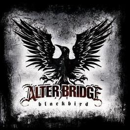 Blackbird 2007 Alter Bridge