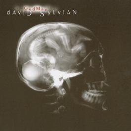 God Man 1999 David Sylvian
