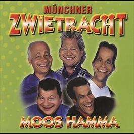 Moos hamma 2001 Münchner Zwietracht