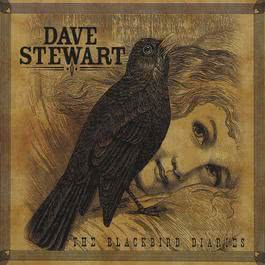 The Blackbird Diaries 2017 Dave Stewart