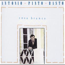 Rosa Branca 1988 António Pinto Basto