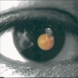Black Tangerine 2014 David Tao (陶喆)