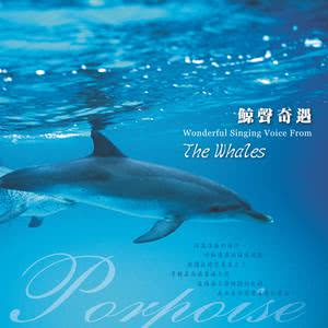 Wonderful Singing Voice from the Whales 2017 周志宏