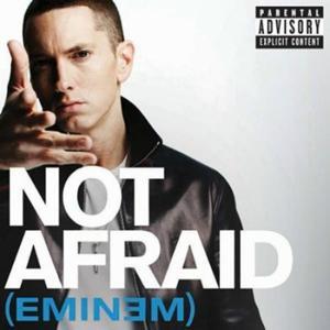 Not Afraid 2010 Eminem