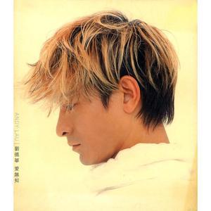 Ai Mo Zhi 2014 Andy Lau (刘德华)
