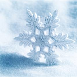 Winter Flakes