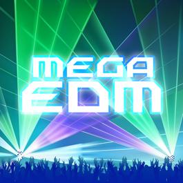MEGA EDM