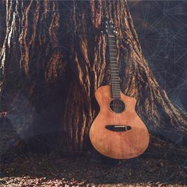 Let's Acoustic