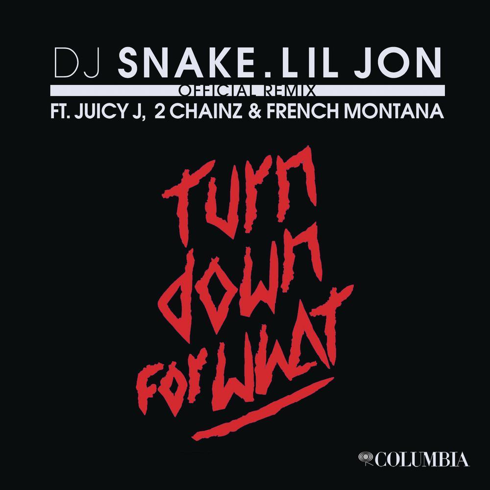 เพลง DJ Snake