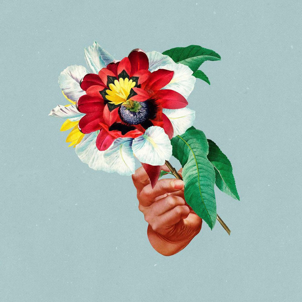 ฟังเพลงใหม่อัลบั้ม Kingdoms In Colour