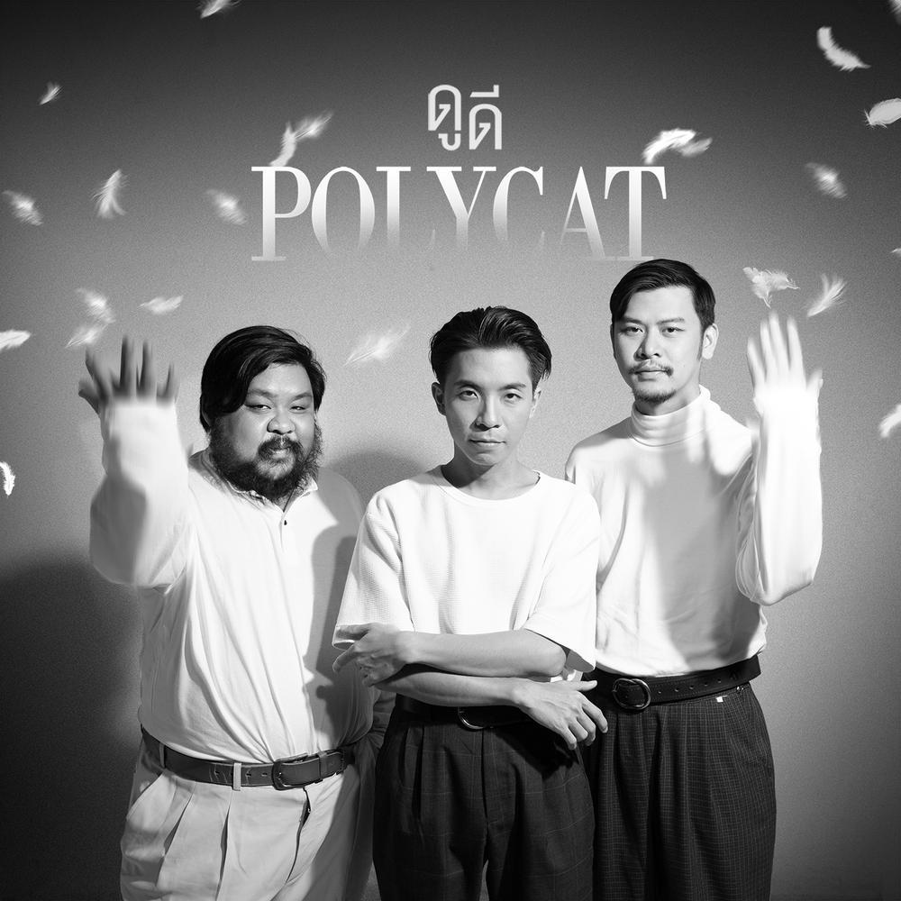 เพลง Polycat