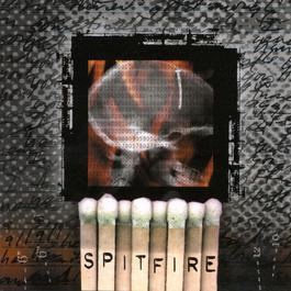The Dead Next Door 1999 Spitfire