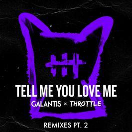 อัลบั้ม Tell Me You Love Me (Remixes Pt. 2)