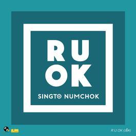 อัลบั้ม R U OK (เช็ด)