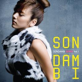 SonDamBi Remix Vol1. 2008 Son Dam bi