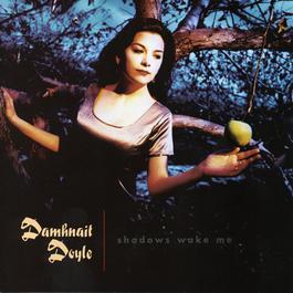 Shadows Wake Me 1996 Damhnait Doyle