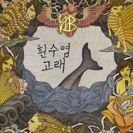 Blue Whale 2011 尹道贤乐队