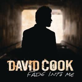 Fade Into Me (Radio Edit) 2011 David Cook