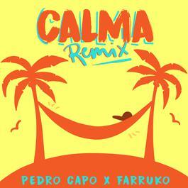 ฟังเพลงอัลบั้ม Calma (Remix)