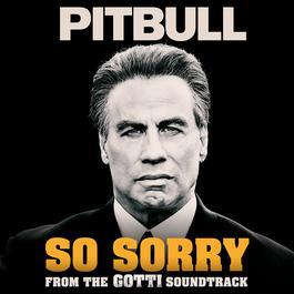 ฟังเพลงอัลบั้ม So Sorry