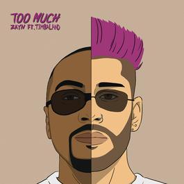 ฟังเพลงอัลบั้ม Too Much