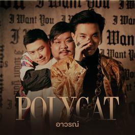 อาวรณ์ 2018 Polycat