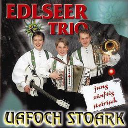 Uafoch stoark 1996 Edlseer Trio