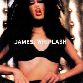Whiplash 2001 James
