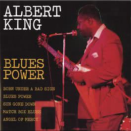 Blues Power 1993 Albert King