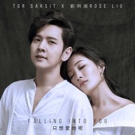 ฟังเพลงอัลบั้ม Falling Into You - Single