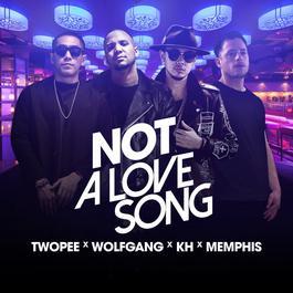 อัลบั้ม Not a Love Song