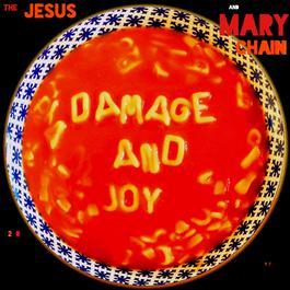 ฟังเพลงอัลบั้ม Damage and Joy